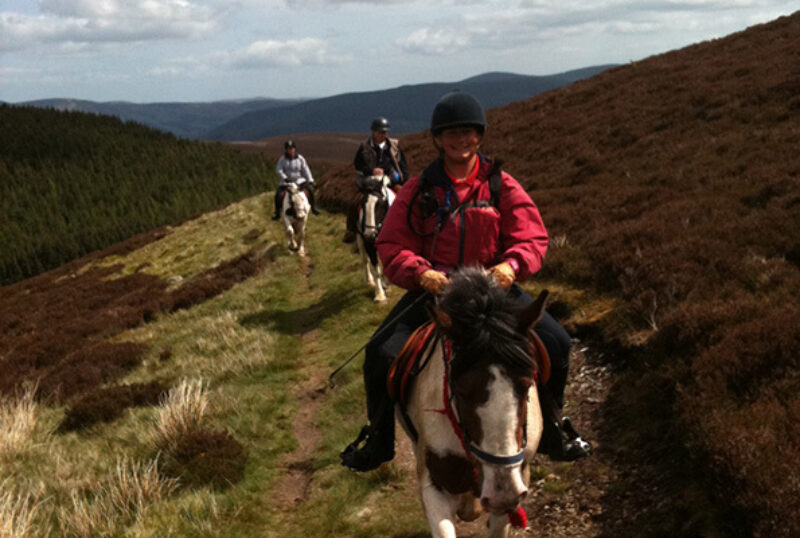 Scottish Equestrian Centre trail on hillside