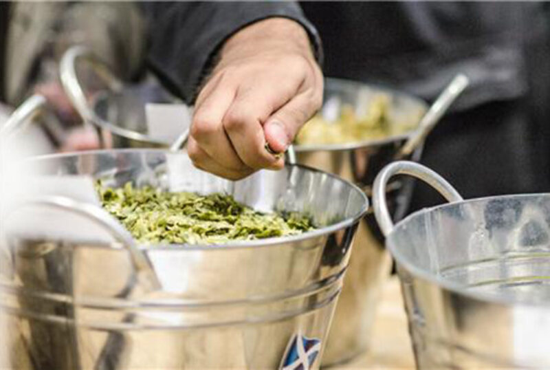 Steward Brewing hops