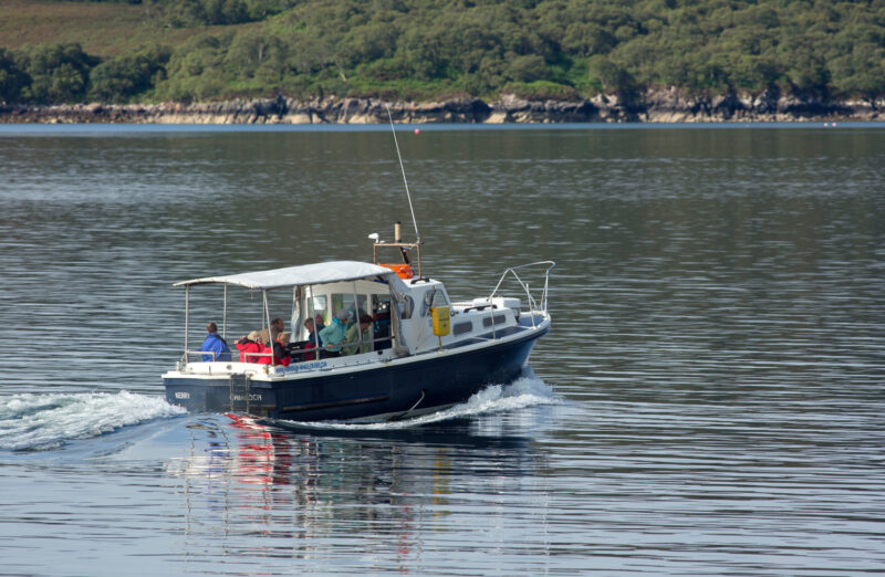 Hebridean Whale Cruises On Gairloch