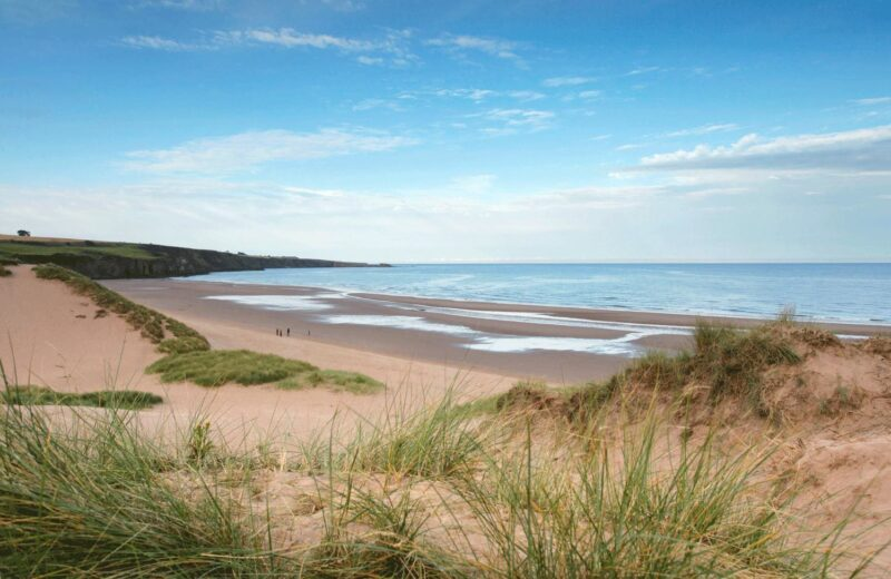 People Walking On The Beach At Lunan Bay Near Montrose Angus